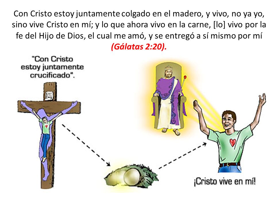 Con Cristo estoy juntamente colgado en el madero, y vivo, no ya yo, sino vive Cristo en mí; y lo que ahora vivo en la carne, [lo] vivo por la fe del Hijo de Dios, el cual me amó, y se entregó a sí mismo por mí (Gálatas 2:20).